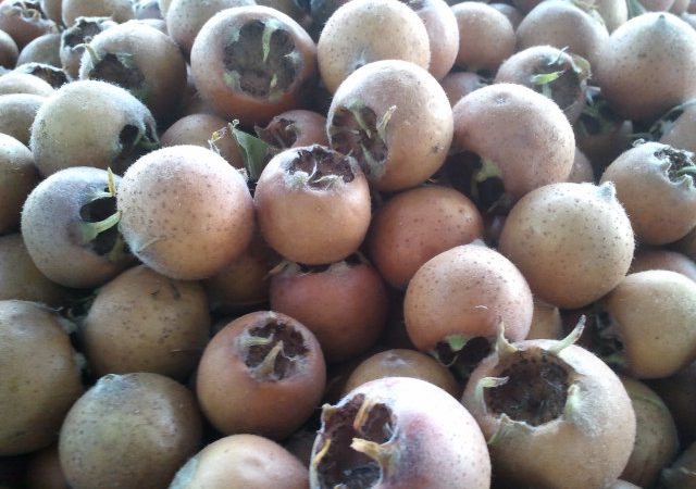 Codigo ganador sorteo mes de noviembre en Ladevesa Fresh Fruit