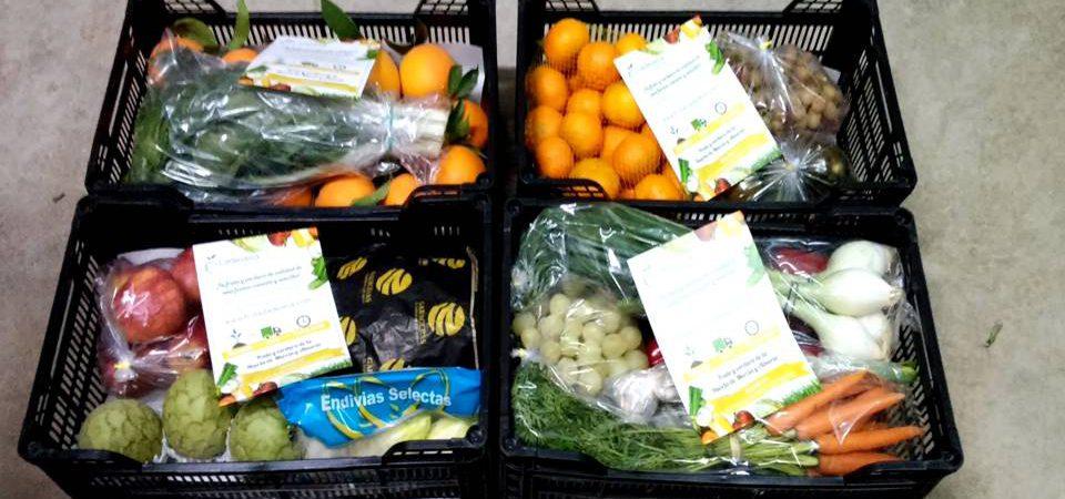 Haz tu pedido de fruta y verdura en Ladevesa Fresh Fruit