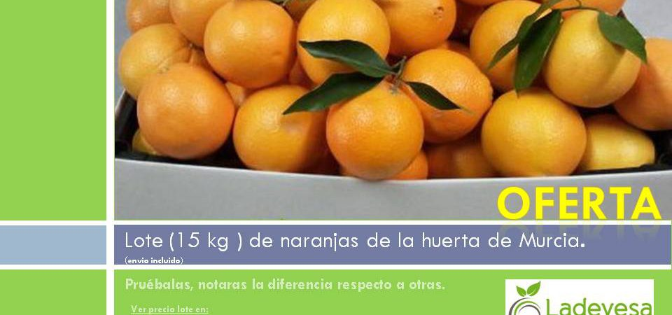 Naranjas de la huerta de Murcia