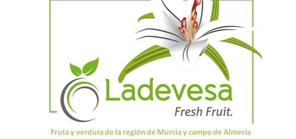 Tu fruta y verdura en un solo Click en www.frutasladevesa.com