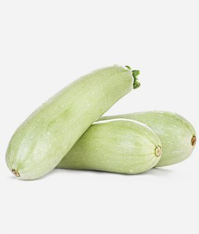 Calabacín blanco ( murciano )