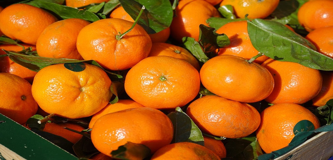 Prueba nuestras deliciosas mandarinas ( ahora en OFERTA )