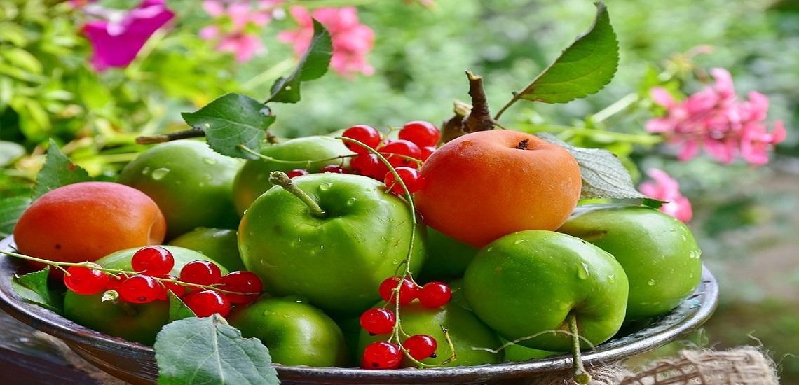Comienza la fruta de verano, la fruta que a todos nos gusta.