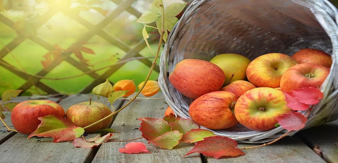 Las mejores 25 frutas de otoño para consumir toda la temporada